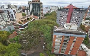 Необыкновенная зеленая улица в Бразилии