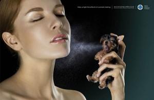 Помогите нам бороться с косметическими тестами на животных.