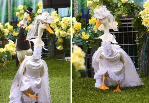 Утиный парад мод (Pied Piper Duck Show)