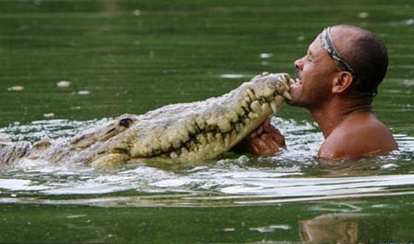 Крокодил и человек