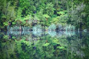 Фотографии сказочных пейзажей