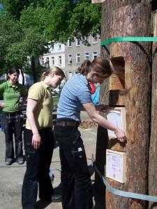 «Книжный лес» - общественные книжные шкафы