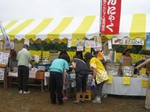 Фестиваль Подсолнухов в японской Заме