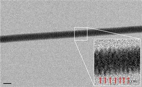 Впервые ученым удалось сделать прямой снимок двойной спирали молекулы ДНК