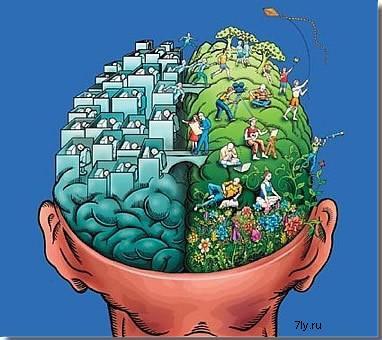 Клетки мозга сделают из мочи