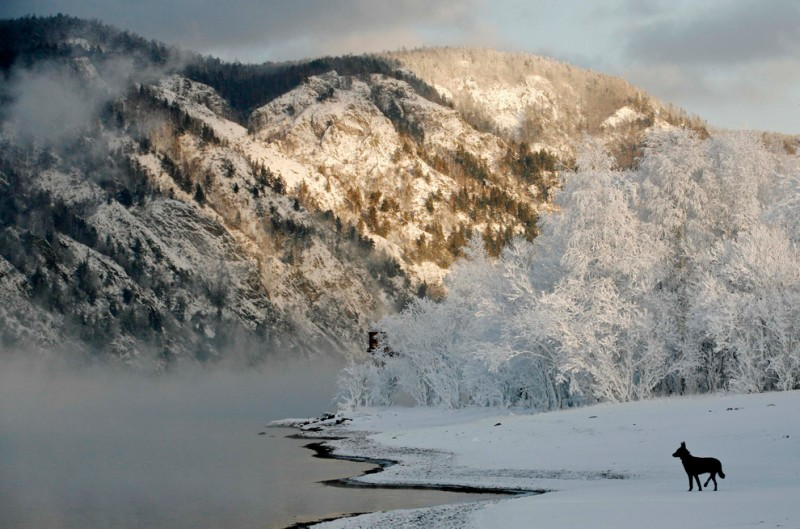 Yenisei-River-seasons-6-800x529