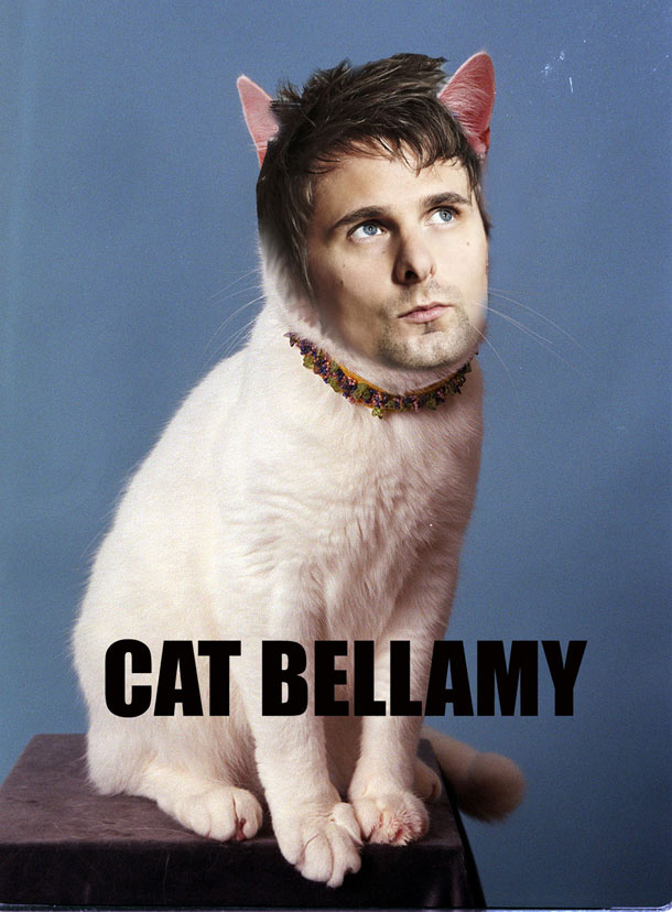 cat-bellamy-5