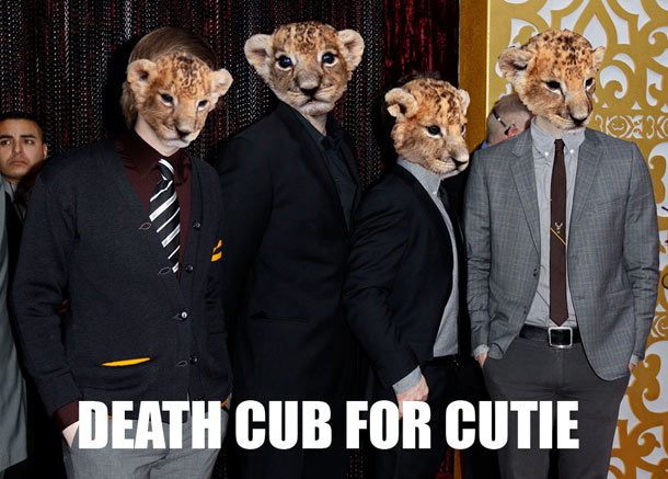 death-cub-for-cutie-2