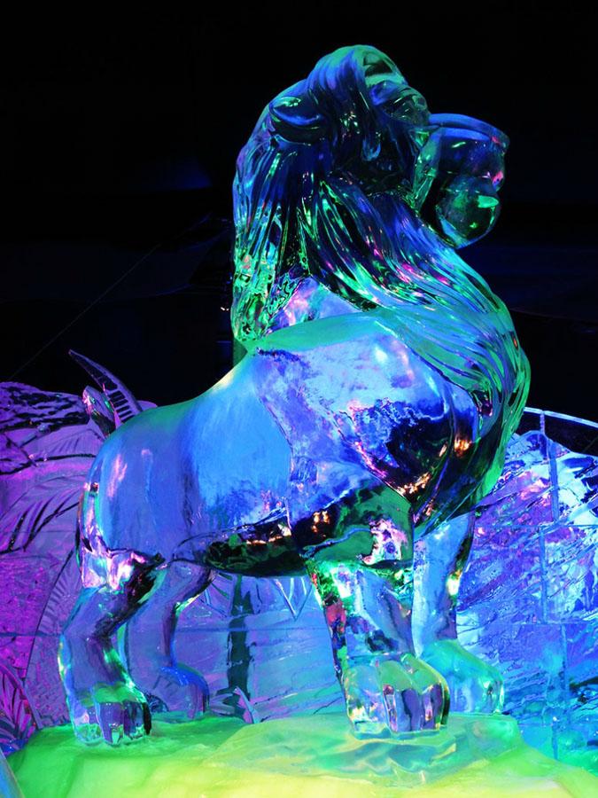 icefigures-14