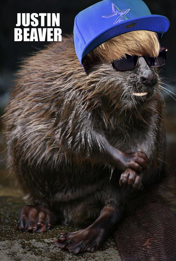 justin-beaver-6