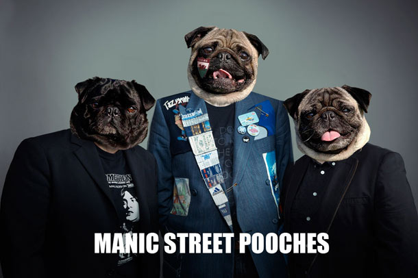 manic-street-pooches-3