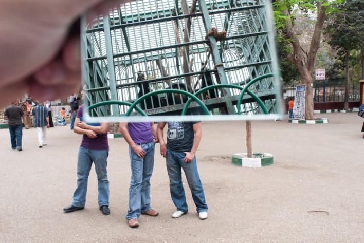 010_Zoo_Genenat_El_Haywanat-_El_Cairo_Egipto_860.708x473x50