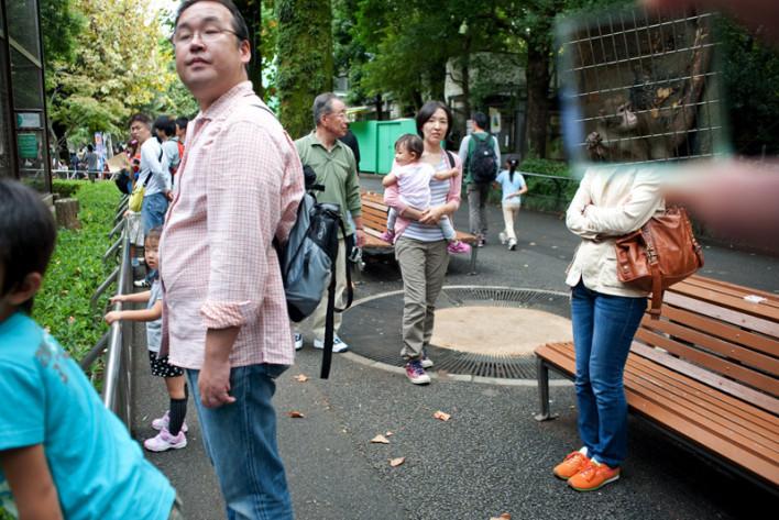 011_Zoo_de_Ueno-Tokio_Japn_860.708x473x50
