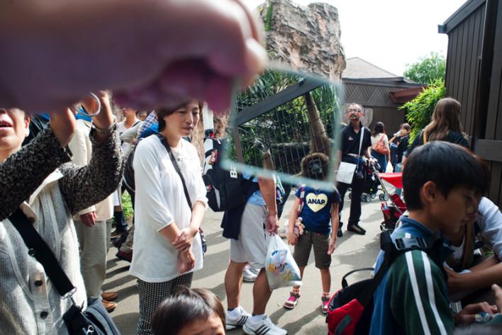 020_Zoo_de_Ueno-_Tokio_Japn_860.708x473x50