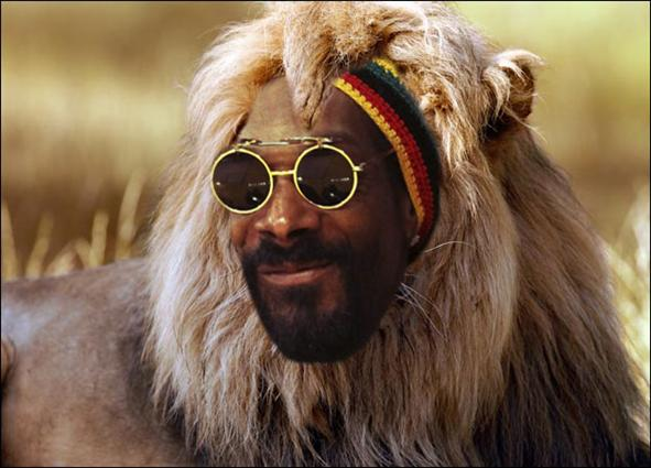 snoop-dogg-now-snoop-lion_h