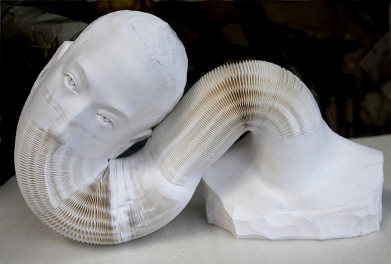 li-hongbo-paper-sculptures-malleable-flexible-2
