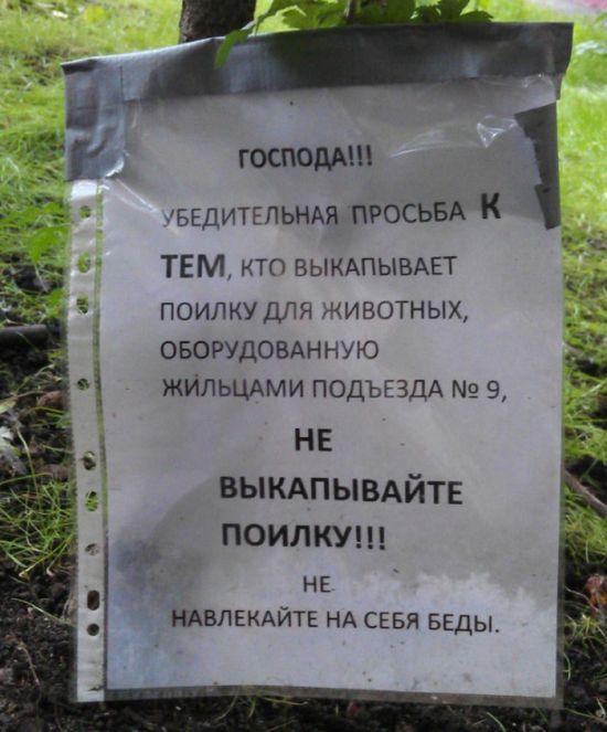obiyavleniya_09