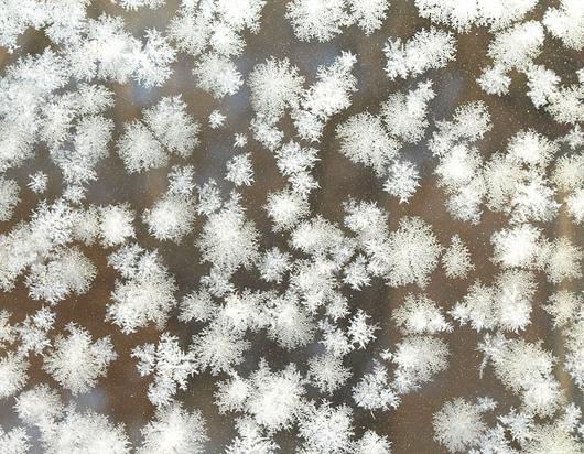 snowflake_NIK