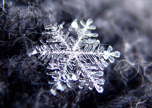 snowflake_andreas