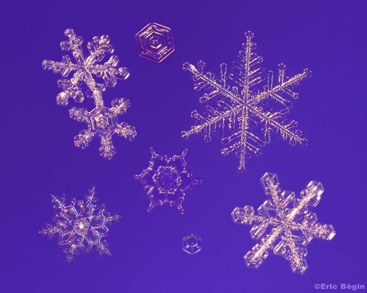 snowflake_ericbegin