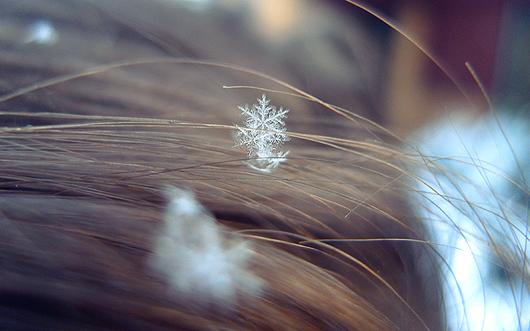 snowflake_guiseiz