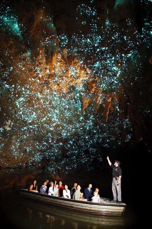 Пещеры Светлячков в Новой Зеландии