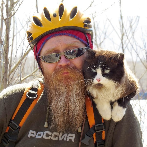 Cyclist Cat from Krasnoyarsk