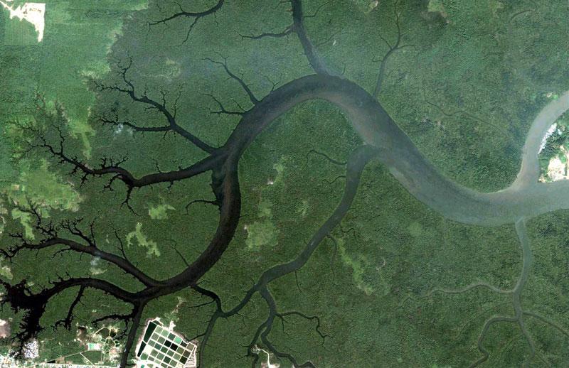 kuching-malaysia-google-earth-fractals