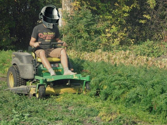 lawn-647