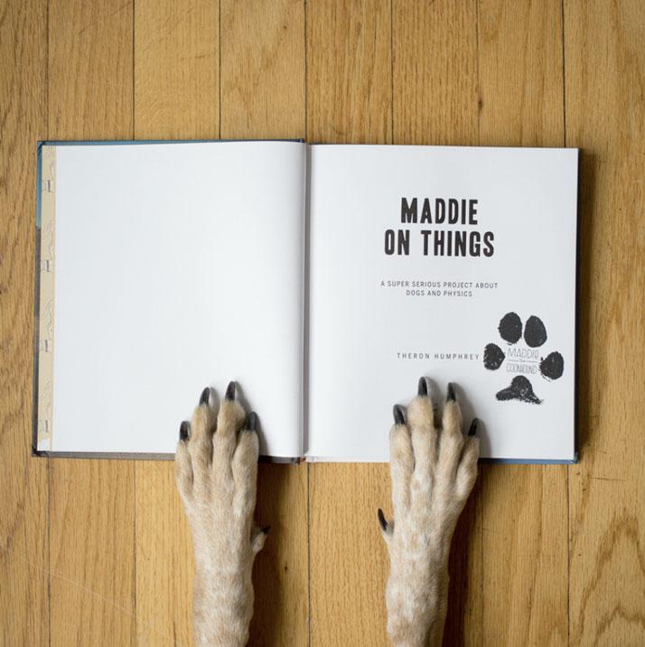 maddie-on-things-yatzer-8