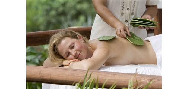 a3_Cactus-Massage_630
