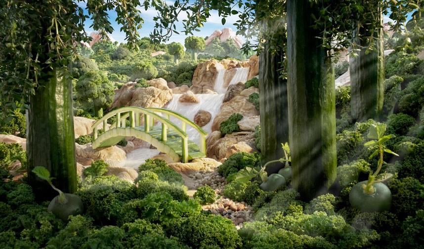forest-scene_2392500k