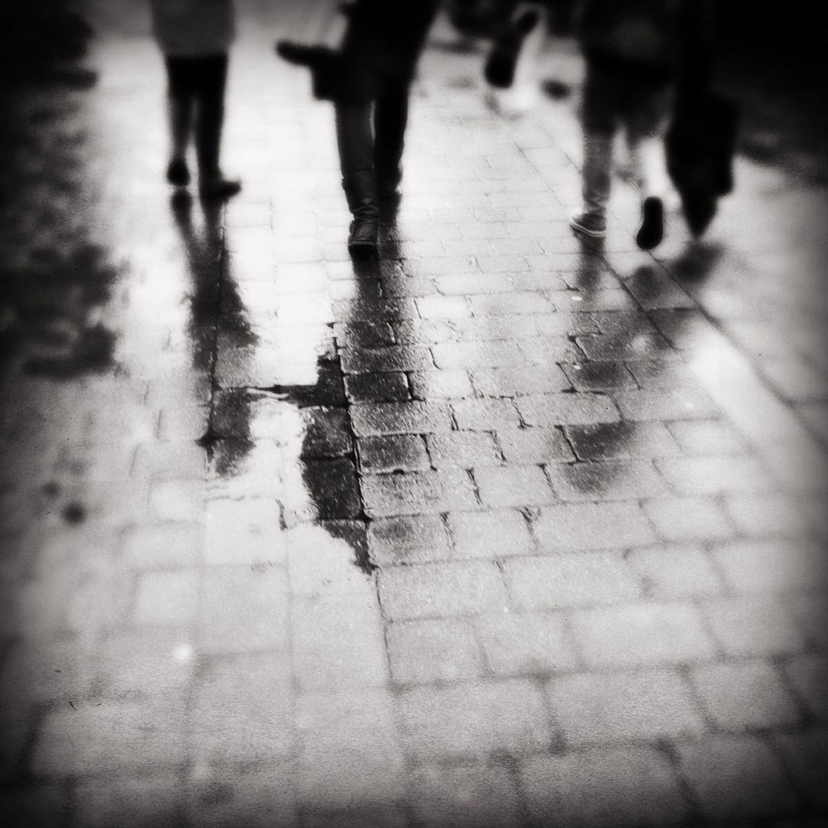 urban-wet-socks