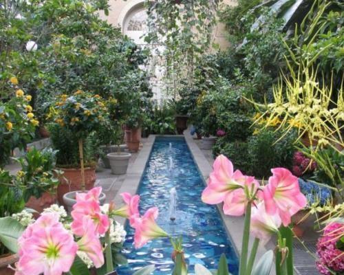 us-botanic-garden-court-pink-flowers