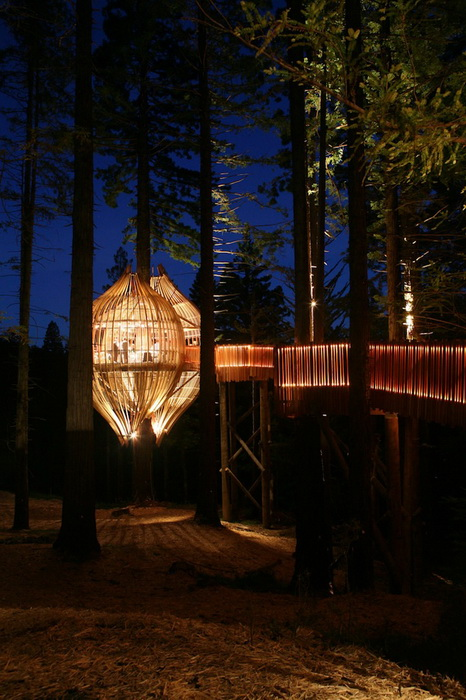 Yellow-Treehouse-Restaurant-5