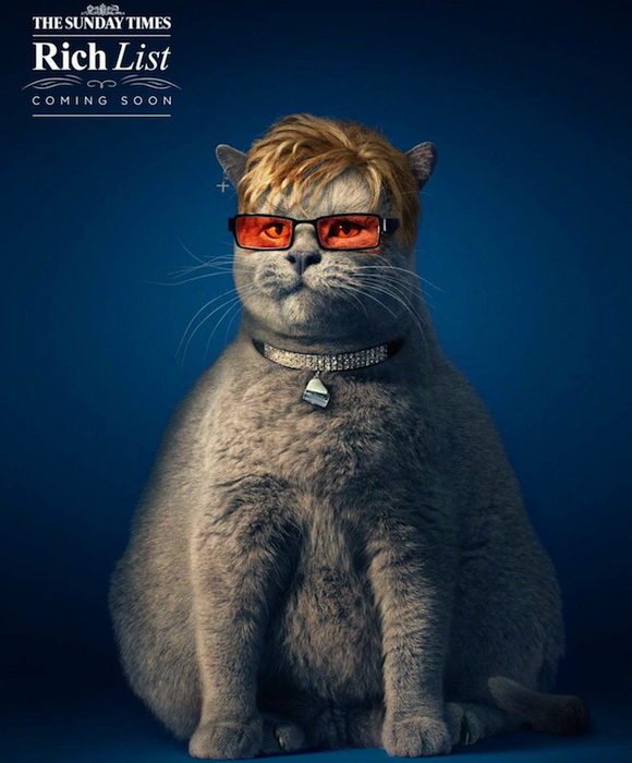 fat-cat-1