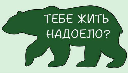 1405509719_kak-gladit-zhivotnyh-5