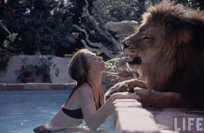 pet-lion-neil-film-michael-rougier-2