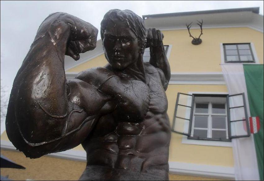 shvarceneggera-arnolda-statuya-krasivye-fotografii-neobychnye-fotografii_9233907311