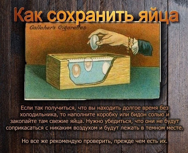 polzoy-kurili-otlichie-kartinki-smeshnye-kartinki-fotoprikoly_156467854