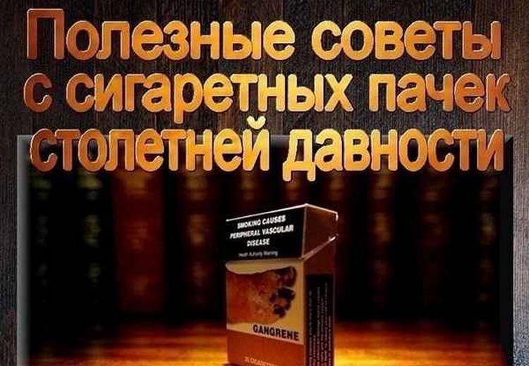 polzoy-kurili-otlichie-kartinki-smeshnye-kartinki-fotoprikoly_505812622