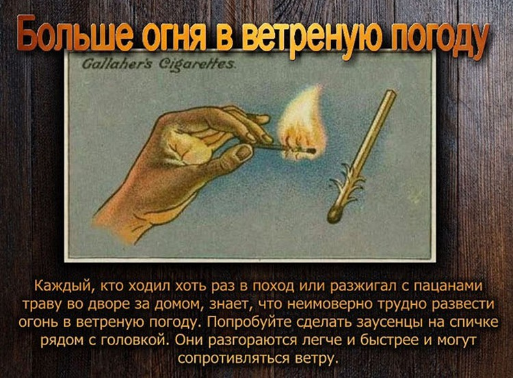 polzoy-kurili-otlichie-kartinki-smeshnye-kartinki-fotoprikoly_8187119936