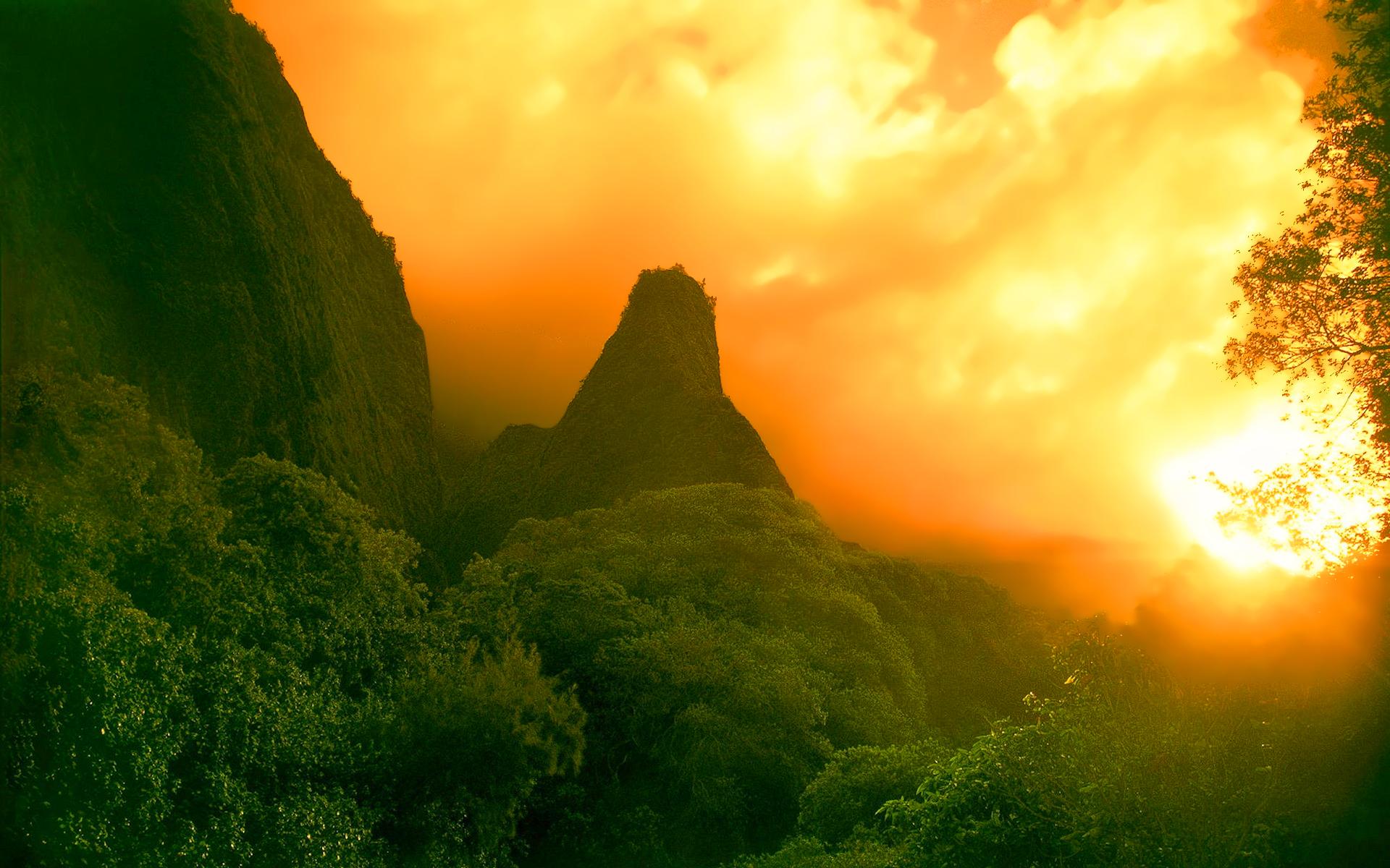 rainforest-sunset