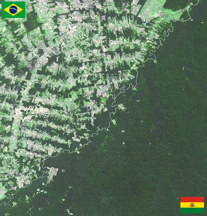 Bolivia And Brasil