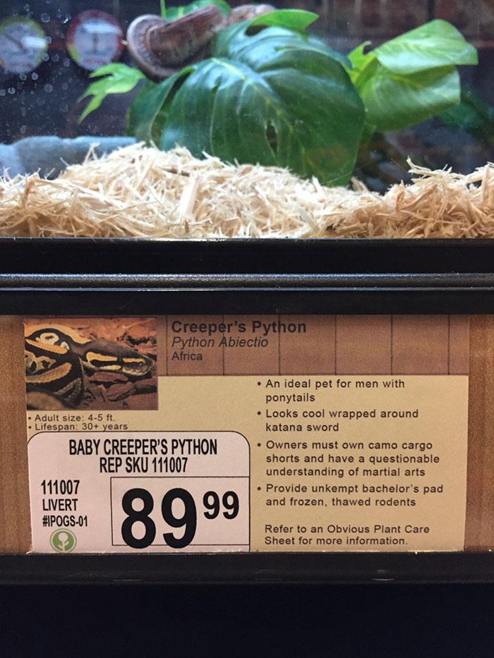 pet-shop-fake-name-prank-obvious-plant-jeff-wysaski-4