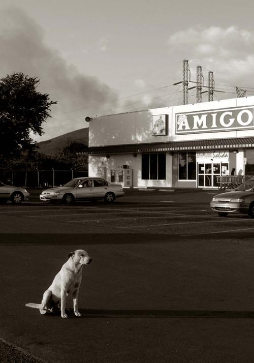 16_Amigo,+Salinas,+Puerto+Rico
