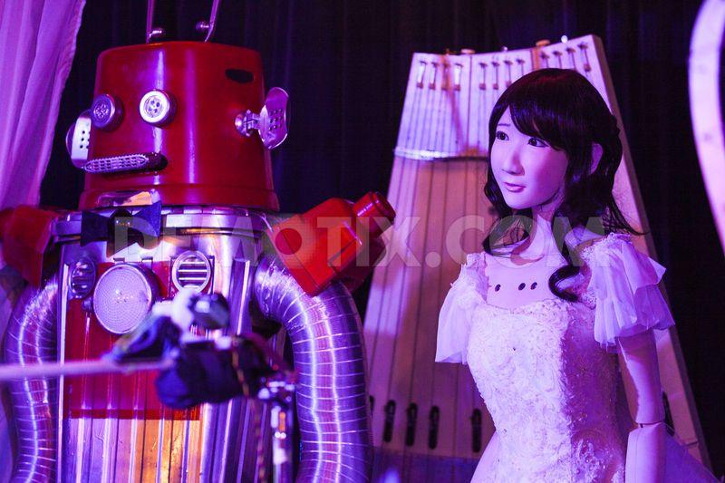 robotov-pozhenili-yaponii-eto-interesno-poznavatelno-kartinki_5230268352