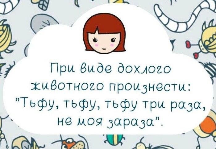 sueveriya-detskie-zabavnye-kartinki-smeshnye-kartinki-fotoprikoly_12991280