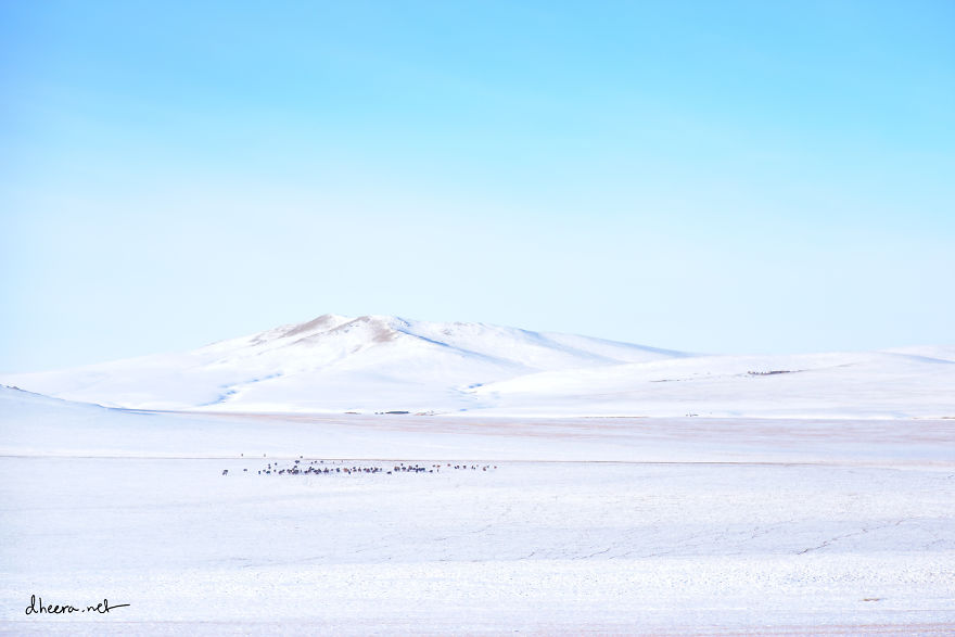 Winter-in-Mongolia (11)