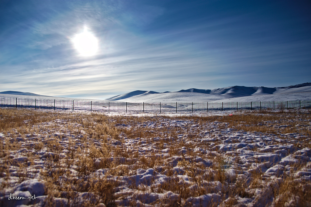 Winter-in-Mongolia (6)